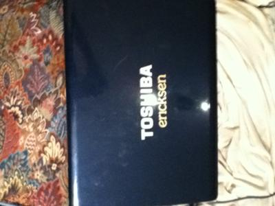 Toshiba Satellite L305-S5955