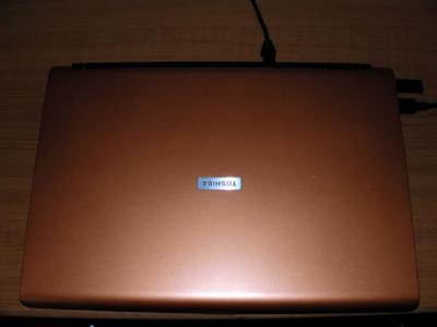 Toshiba Satellite P100-10P